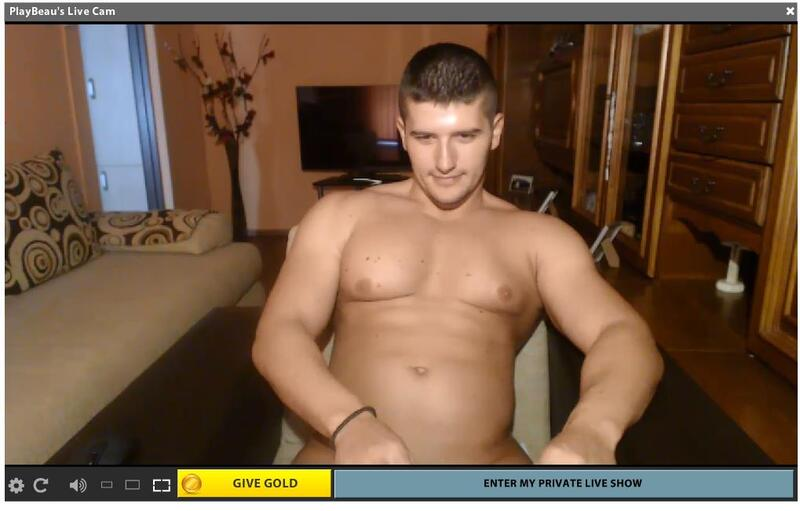 A nude guy on his live webcam chat room
